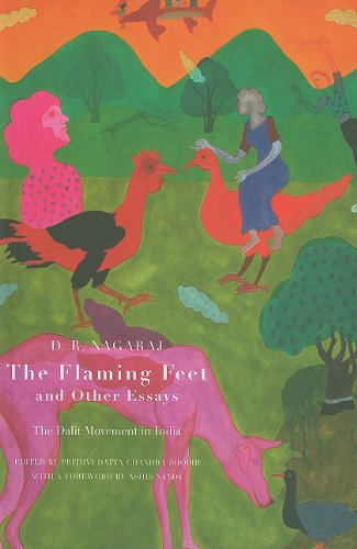 The Flaming Feet & Other Essays: The: Nagaraj, D. R.