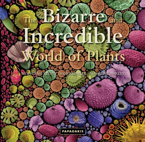 9781906506025: The Bizarre and Incredible World of Plants