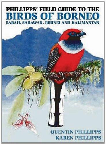 9781906780654: Phillipps' Field Guide to the Birds of Borneo