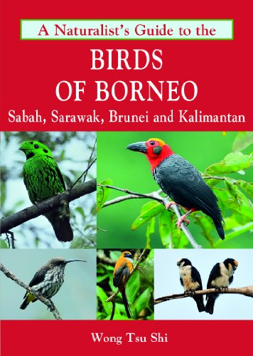 9781906780685: A Naturalist's Guide to the Birds of Borneo (Naturalists' Guides)
