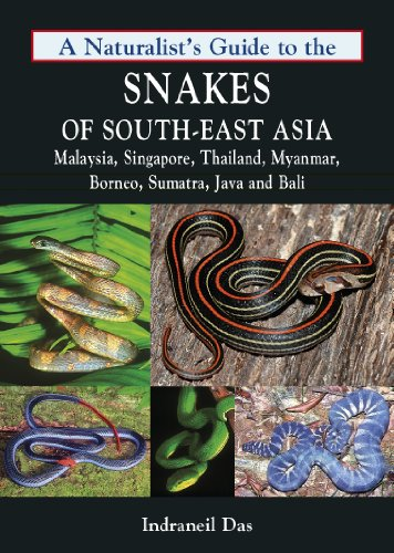 9781906780708: A Naturalist's Guide to the Snakes of South-east Asia: Including Malaysia, Singapore, Thailand, Myanmar, Borneo, Sumatra, Java and Bali
