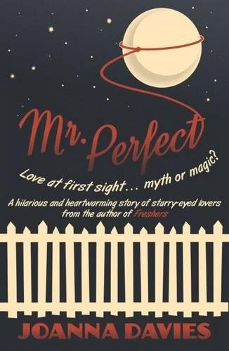 9781906784676: Mr. Perfect