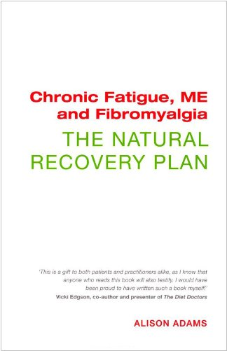 9781906787622: Chronic Fatigue, ME and Fibromyalgia The Natural Recovery Plan