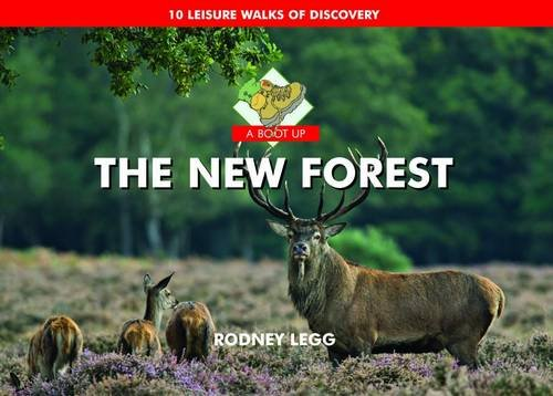 A Boot Up the New Forest: Rodney Legg