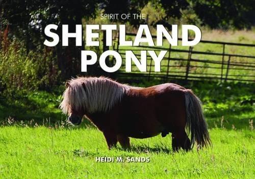 Spirit of the Shetland Pony: Sands, Heidi M.