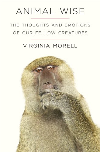 9781906964917: Animal Wise: The Thoughts and Emotions of Animals