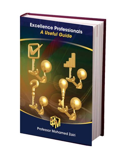 9781906993115: Excellence Professionals: A Useful Guide