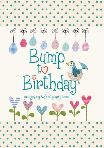 9781907048418: Bump to Birthday, Pregnancy & First Year Journal