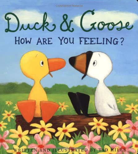 9781907152078: Duck & Goose: How Are You Feeling?