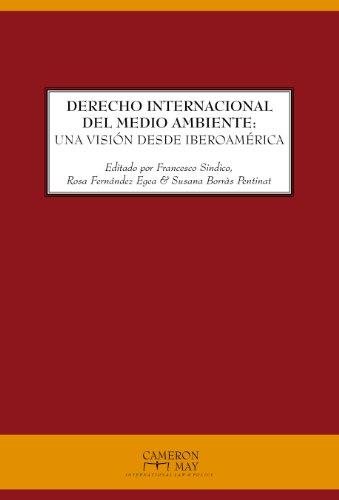 9781907174094: Derecho Internacional Del Medio Ambiente: Una Vision Desde Iberoamerica (Spanish Edition)