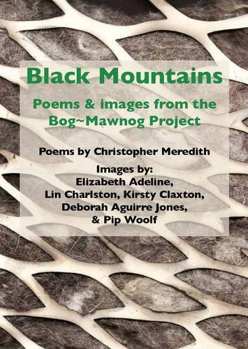 9781907327162: Black Mountains: Poems and Images from the Bog-mawnog Project