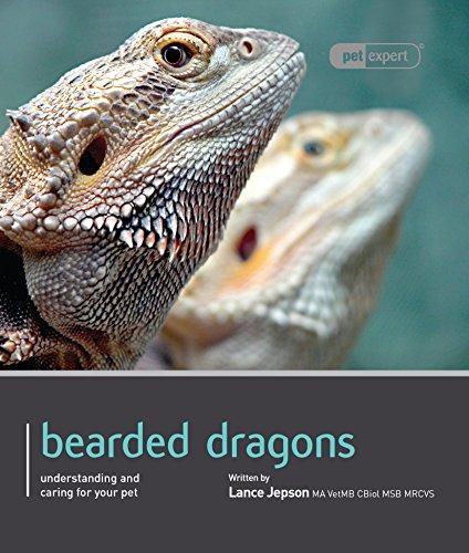 9781907337154: Bearded Dragon - Pet Expert