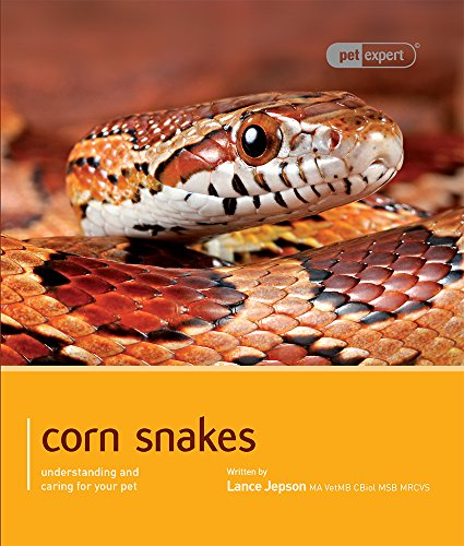 9781907337277: Corn Snakes: Understanding and Caring for Your Pet