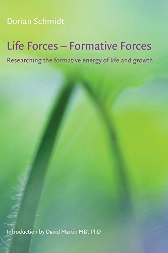 Life Forces - Formative Forces (Art & Science): Schmidt, Dorian
