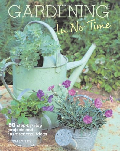 9781907563188: Gardening in No Time: 50 Step-By-Step Projects and Inspirational Ideas