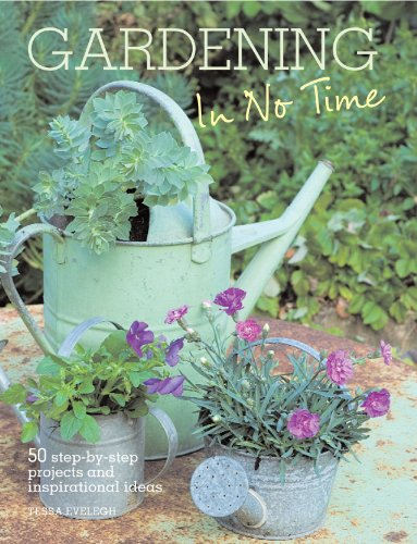 9781907563256: Gardening in No Time: 50 Step-by-step Projects and Inspirational Ideas