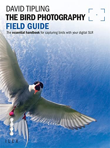 9781907579240: The Bird Photography Field Guide (Photographer's Field Guide)