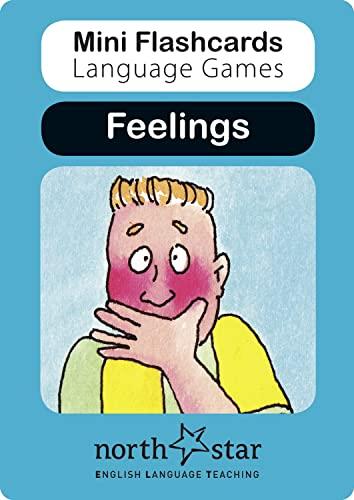 9781907584138: Feelings (Mini Flashcards Language Games)