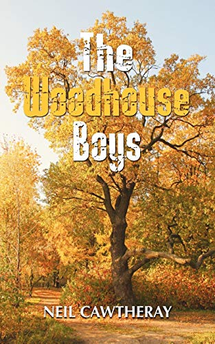 9781907652851: The Woodhouse Boys