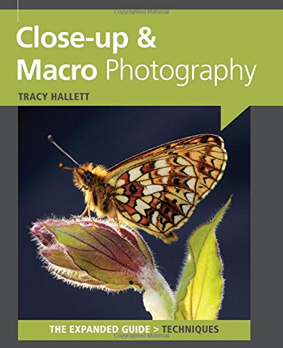 9781907708008: Close Up & Macro Photography (Expanded Guides - Techniques)