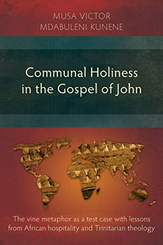9781907713231: Communal Holiness in the Gospel of John: The Vine Metaphor as a Test Case with Lessons from African Hospitality and Trinitarian Theology