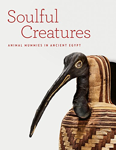 9781907804274: Soulful Creatures: Animal Mummies in Ancient Egypt