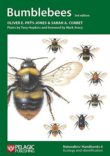 9781907807060: Bumblebees: 6 (Naturalists' Handbooks)