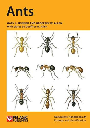 9781907807602: Ants (Naturalists' Handbook)