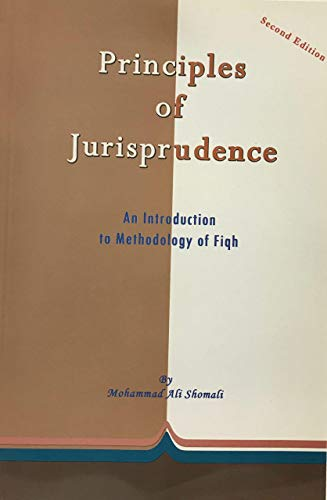 9781907917059: Principles of Jurisprudence: An Introduction to Methodology of Fiqh