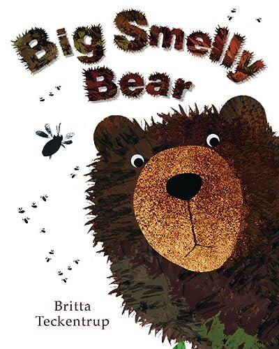 9781907967641: Big Smelly Bear