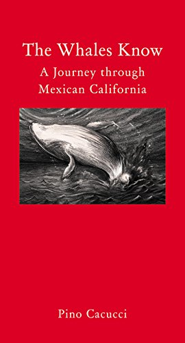 9781907973888: The Whales Know: A Journey through Mexican California (Literary Travellers)