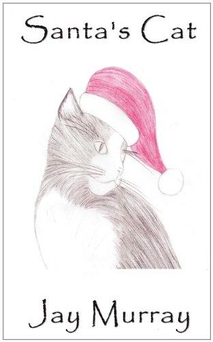9781907986598: Santa's Cat