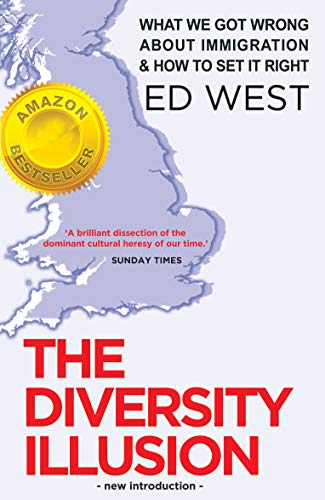 9781908096319: The Diversity Illusion: How Immigration Broke Britain and How to Solve it