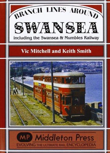 Branch Lines Around Swansea: Vic Mitchell