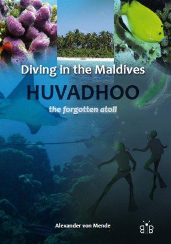 Diving in the Maldives: Mende, Alexander von