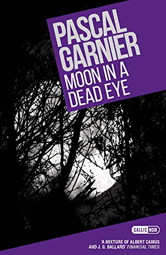 9781908313492: Moon in a Dead Eye