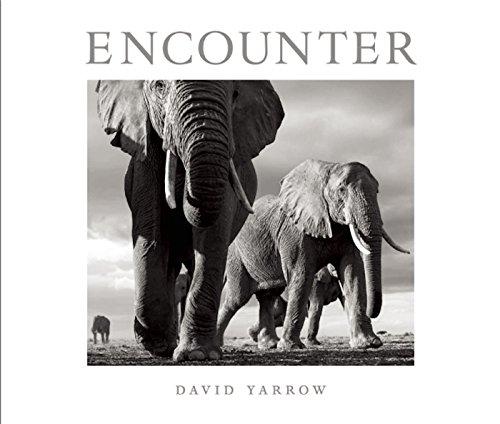 9781908337177: Encounter