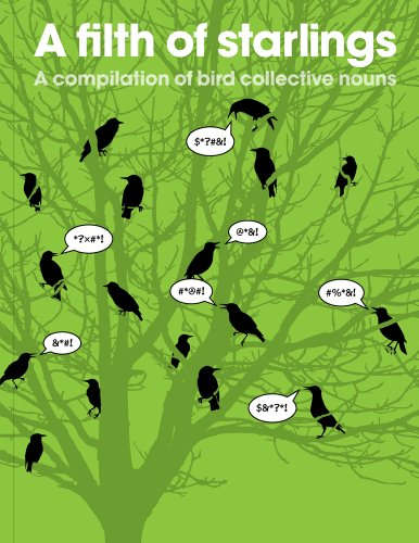 9781908473028: A Filth of Starlings: A Compilation of Bird Collective Nouns