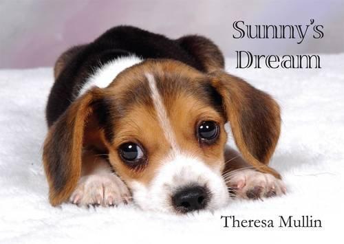 9781908477538: Sunny's Dream