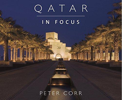 9781908531056: Qatar in Focus