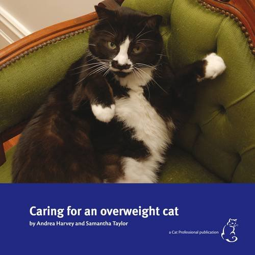 9781908583000: Caring for an Overweight Cat