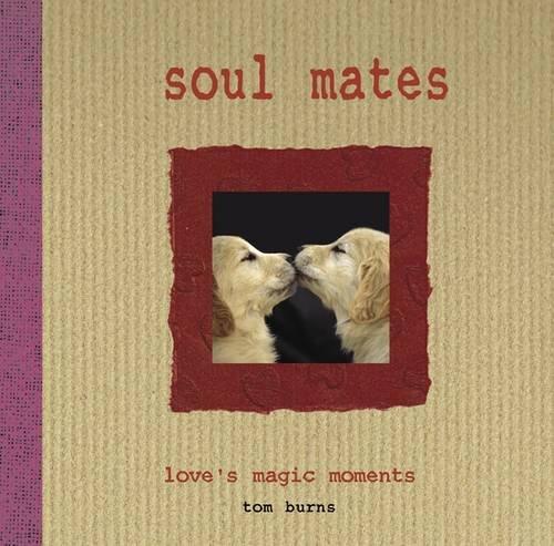 9781908621054: Soul Mates: Love's Magic Moments