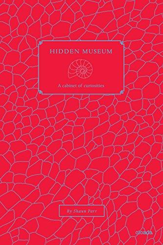 9781908714398: Hidden Museum: A Cabinet of Curiosities