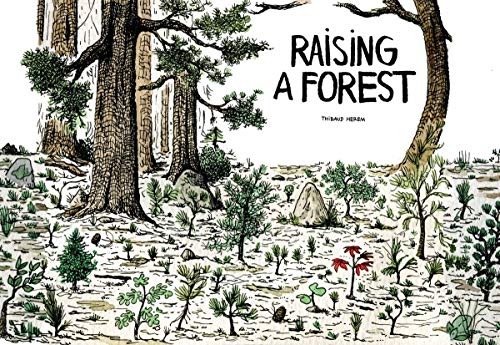 Raising a Forest: Cicada Books