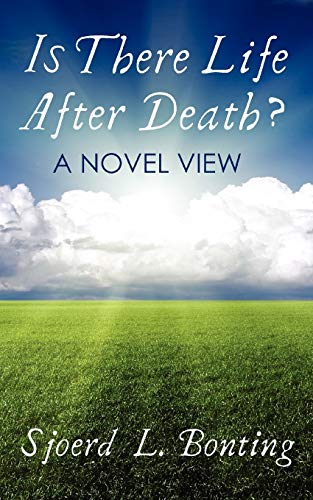 Is There Life After Death?: A Novel View: Sjoerd L. Bonting
