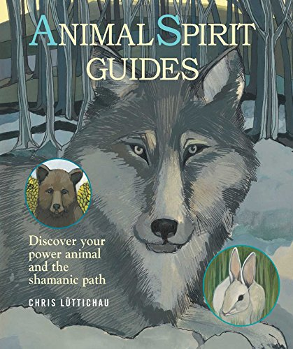 9781908862822: Animal Spirit Guides