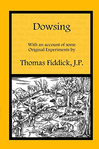 9781908878106: Dowsing: With an Account of Some Original Experiments