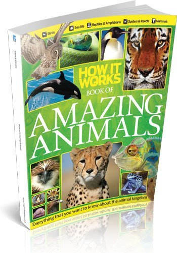 9781908955500: How It Works Book of Amazing Animals