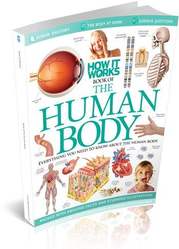 9781908955876: How it Works Book of The Human Body