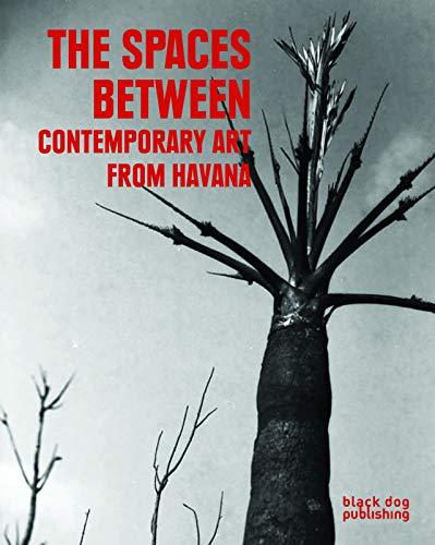 The Spaces Between: Contemporary Art from Havana: Antonio Eligio (Tonel), C. A. Andersson, Charles ...